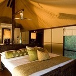 Ngala Tented Camp: Tented Ensuite