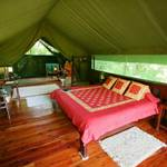 Governor's Private Camp: Luxury Tent