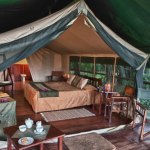 Little Governors Camp: Luxury Tent