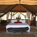 Selous Safari Camp: Tented Accommodation